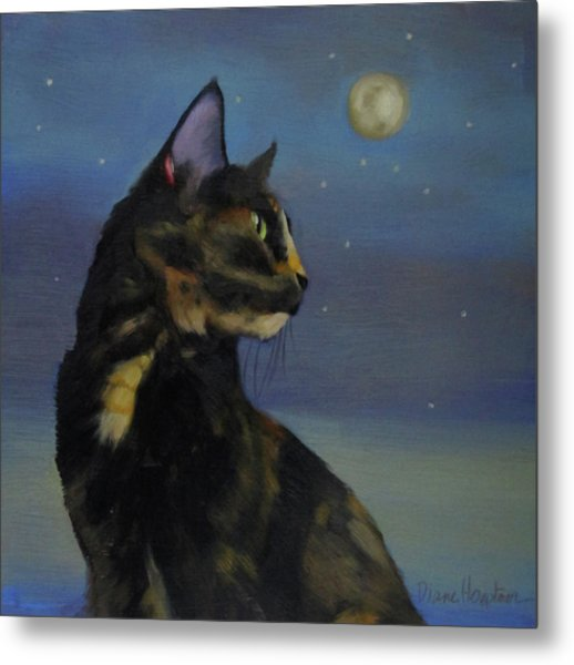 Mighty Tortie Metal Print by Diane Hoeptner