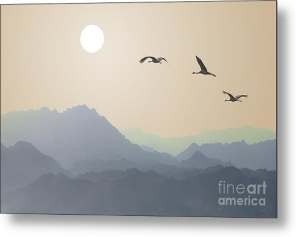 Migrating Cranes To The Sun Over The Metal Print