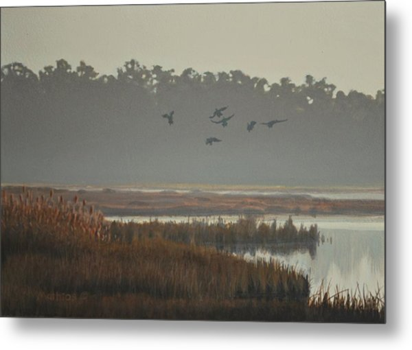 Misty Marsh Metal Print