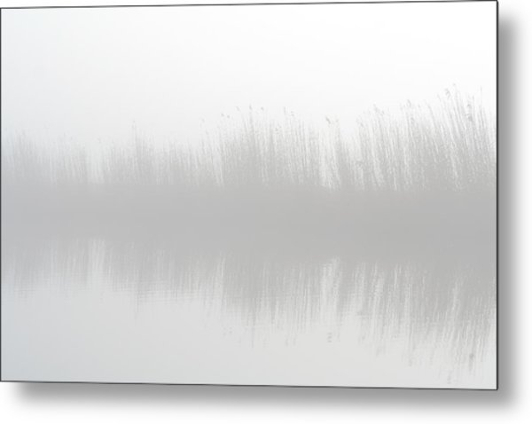 Misty Morning At The Riverside Metal Print