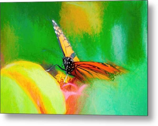 Monarch Butterfly Beautiful Smudge Metal Print