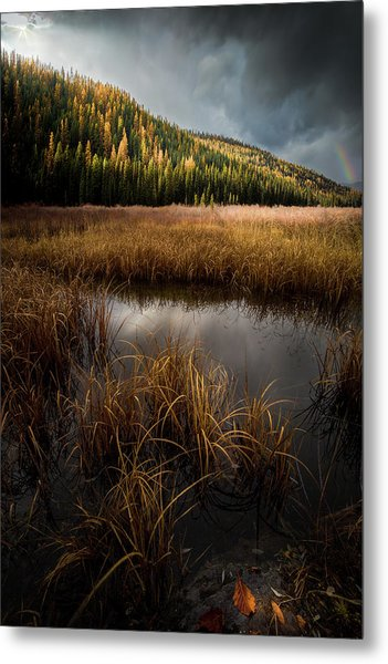 Metal Print featuring the photograph Moody Skies And Rainbows / Whitefish, Montana  by Nicholas Parker