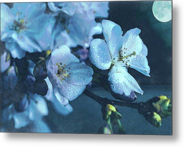 Moonlit Night In The Blooming Garden Metal Print