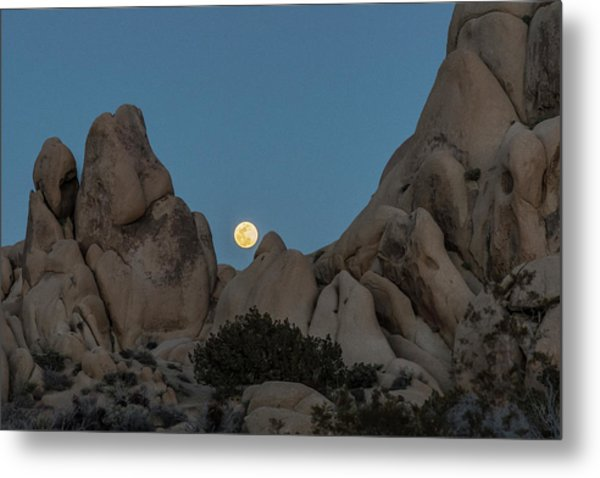 Moonrise In The Sight Metal Print