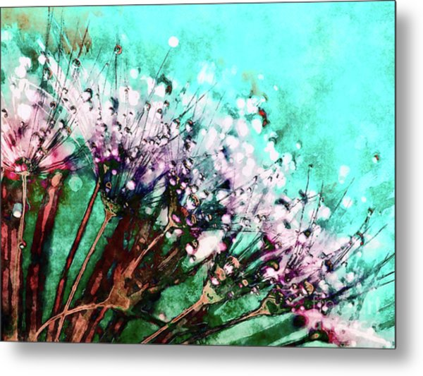 Morning Dew On Dandelions Metal Print