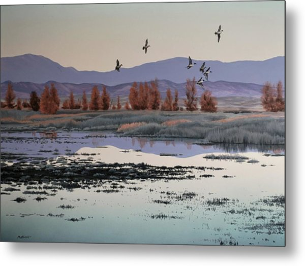 Metal Print featuring the painting Morning Sprig by Peter Mathios