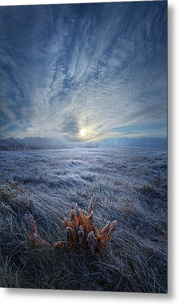 Metal Print featuring the photograph Morning Time Blues by Phil Koch