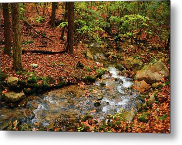Metal Print featuring the photograph Mountain Creek In Ma by Raymond Salani III