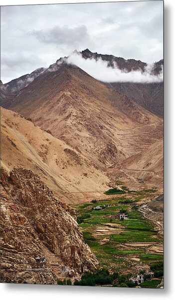 Metal Print featuring the photograph Mountain Farming by Whitney Goodey