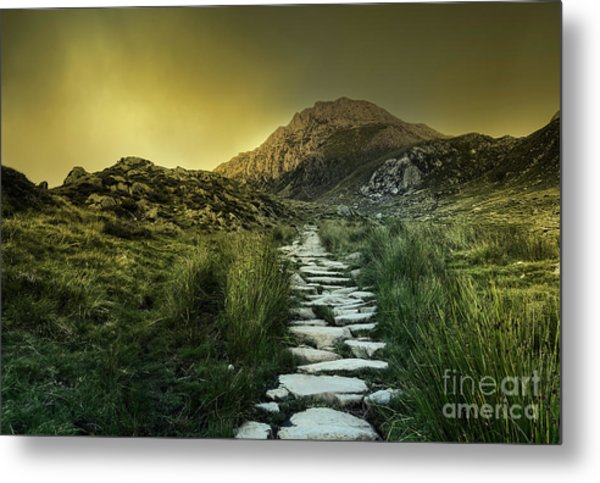 Mountain Path Metal Print