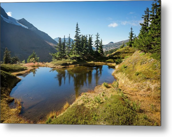 Metal Print featuring the photograph Mountain Pond by Tim Newton