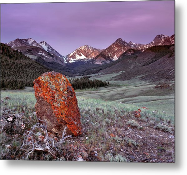 Mountain Textures And Light Metal Print by Leland D Howard