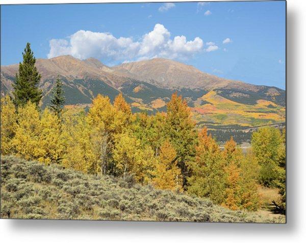 Mt. Elbert Autumn Metal Print by Aaron Spong