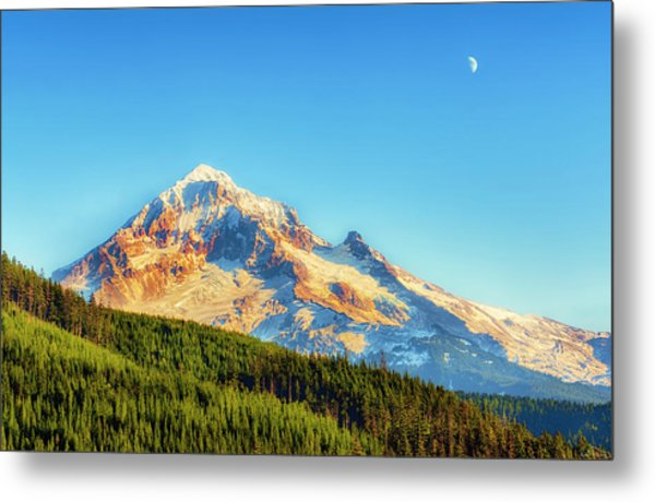 Metal Print featuring the photograph Mt. Hood From Lolo Pass Mt. Hood National Forest by Dee Browning