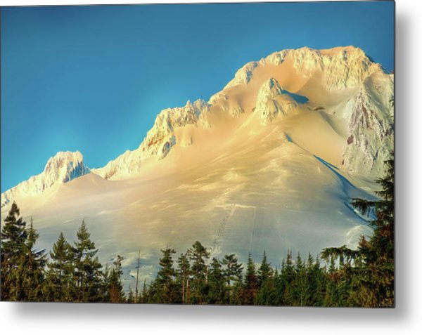 Metal Print featuring the photograph Mt. Hood In Late Afternoon Sunlight by Dee Browning