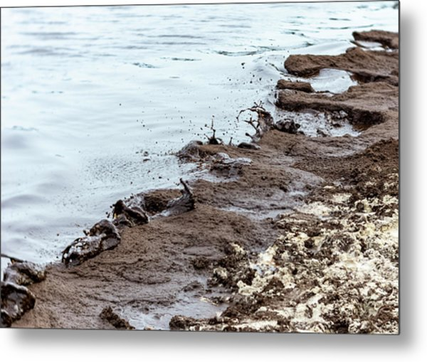 Muddy Sea Shore Metal Print