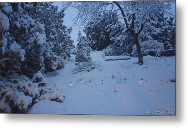 My Colorado Backyard Metal Print