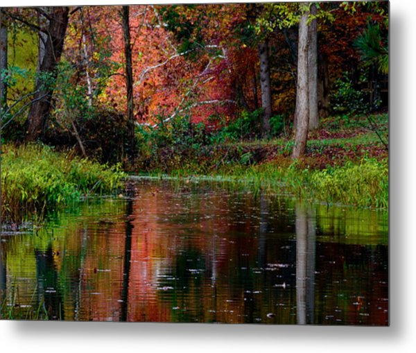 Metal Print featuring the photograph My Secret Place by Kristi Swift