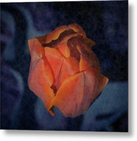 Mysterious Promise Metal Print