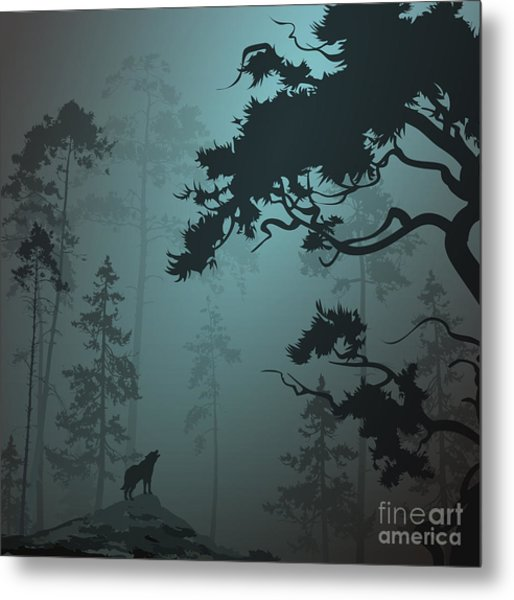 Natural Background With Pine Forest And Metal Print