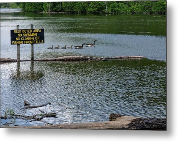 Metal Print featuring the photograph No Swimming by Kristi Swift