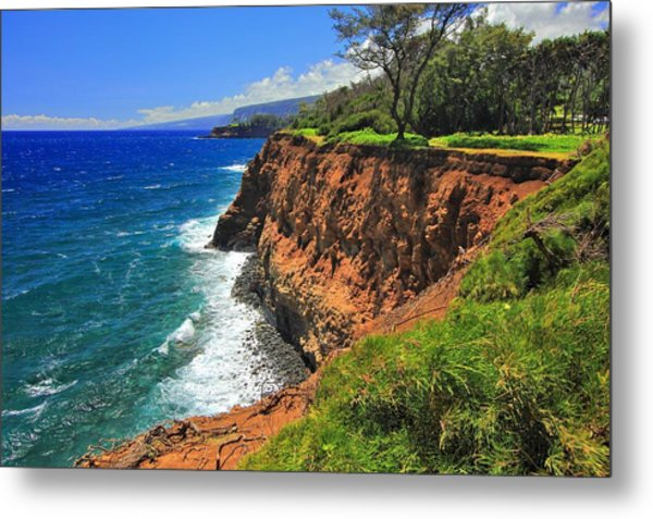 North Hawaii View Metal Print