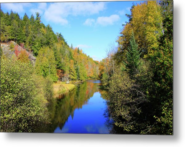 Metal Print featuring the photograph Northwoods Reflection by Dawn Richards