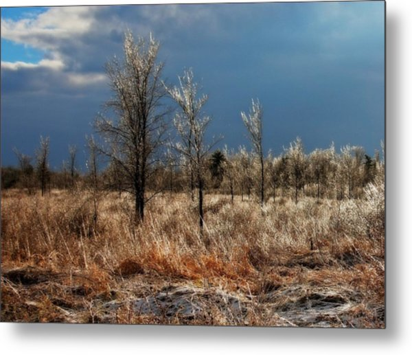 Metal Print featuring the photograph November Icing Magical Light by Tatiana Travelways