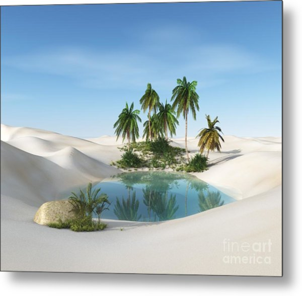 Oasis In The Desert. Palm Trees And Metal Print