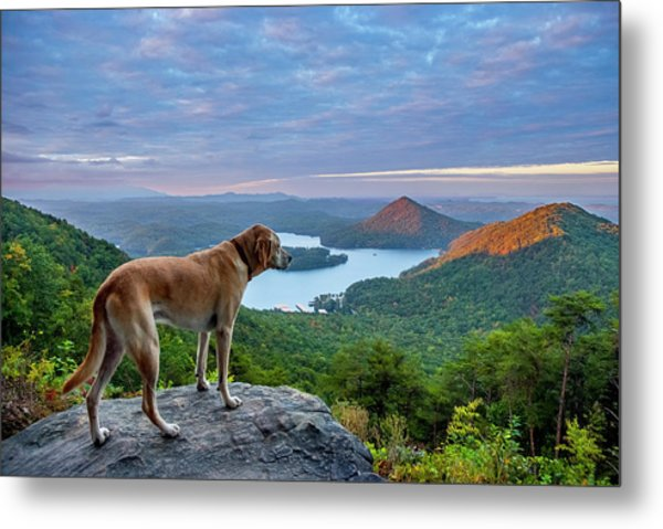 Metal Print featuring the photograph Ocoee Sunrise by Matthew Irvin