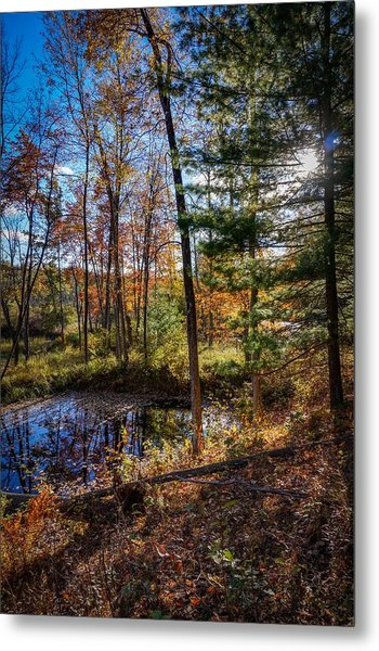 October Late Afternoon Metal Print