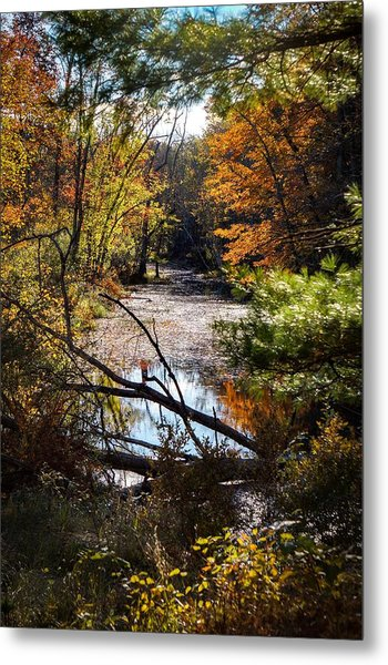 October Window Metal Print