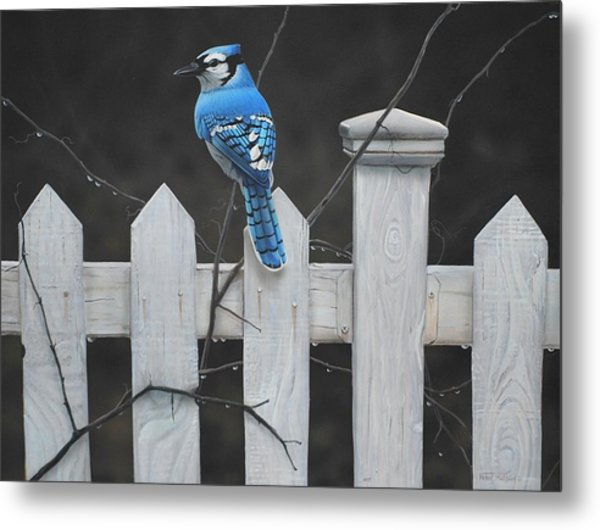 Old Picket Fence Metal Print