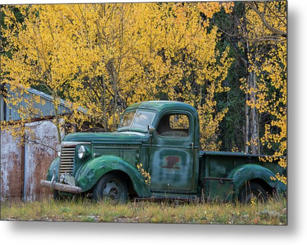 Metal Print featuring the photograph Old Relic by Darlene Bushue