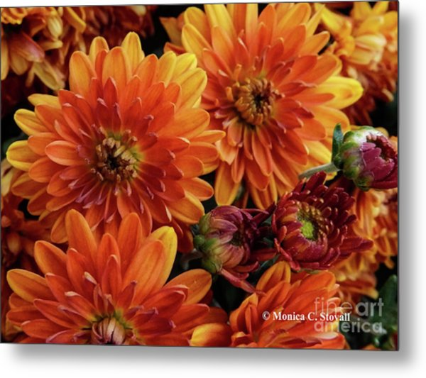 Orange Flowers No. 14 Metal Print