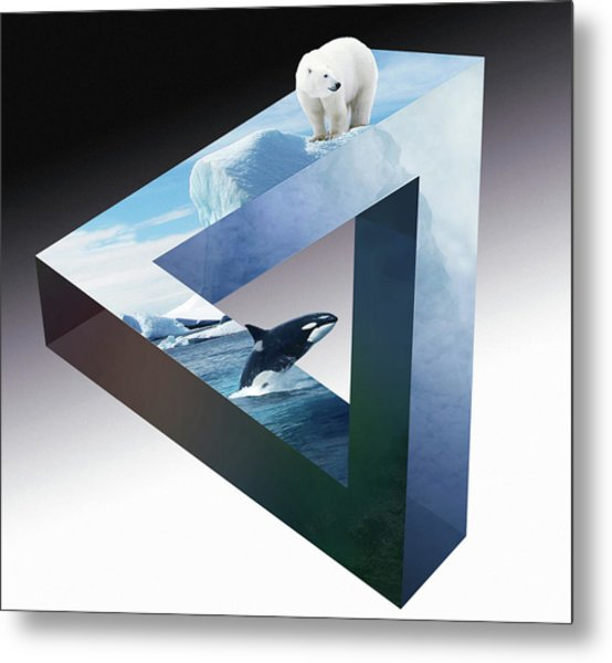Orca And White Bear Metal Print