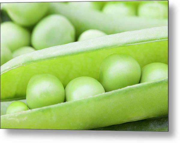 Organic Peas Metal Print by Andrew Dernie