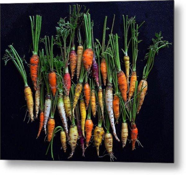 Organic Rainbow Carrots Metal Print