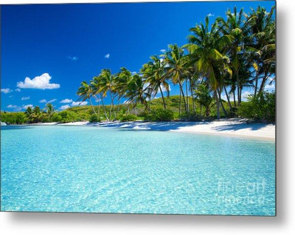 Palm And Tropical Beach Metal Print by Akugasahagy