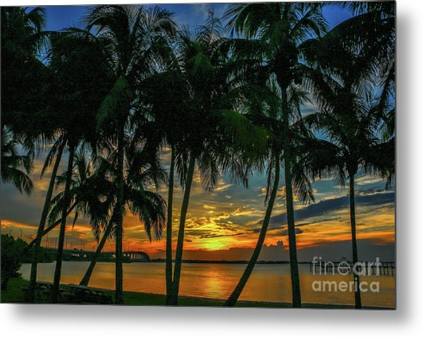 Metal Print featuring the photograph Palm Tree Lagoon Sunrise by Tom Claud