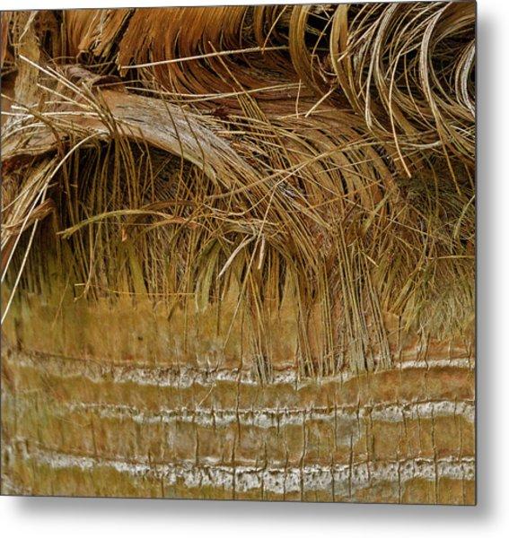 Palm Tree Straw 2 Metal Print