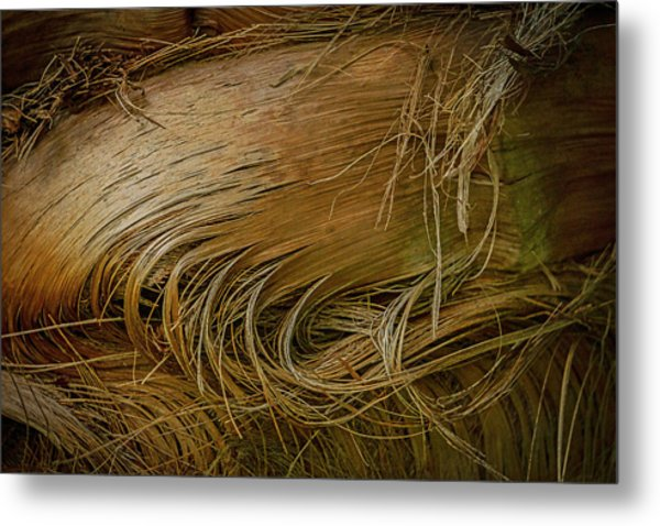 Palm Tree Straw Metal Print