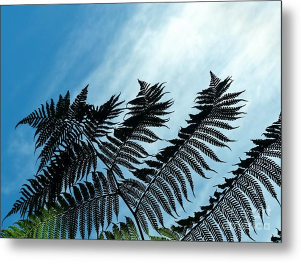 Palms Flying High Metal Print