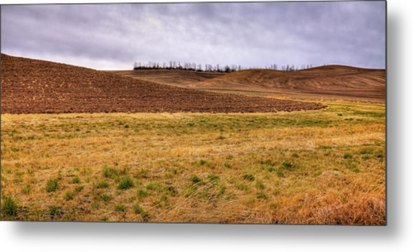 Metal Print featuring the photograph Palouse Farmland by David Patterson