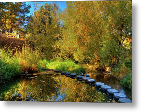 Metal Print featuring the photograph Palouse River Reflections by David Patterson