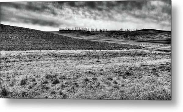 Metal Print featuring the photograph Palouse Treeline by David Patterson