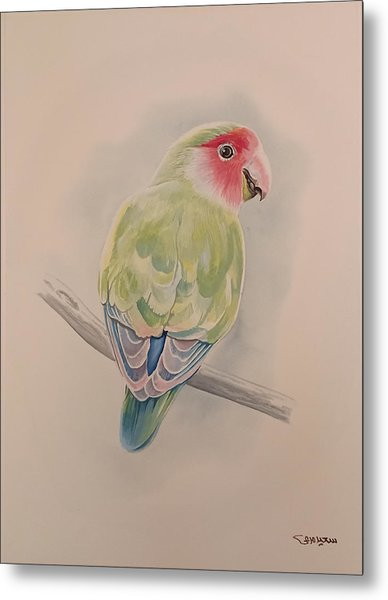 Metal Print featuring the painting Parrot by Said Marie