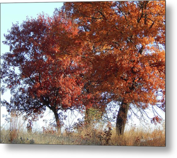 Passing Autumn Metal Print