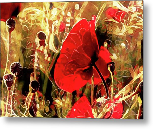 Passionate About Poppies Metal Print