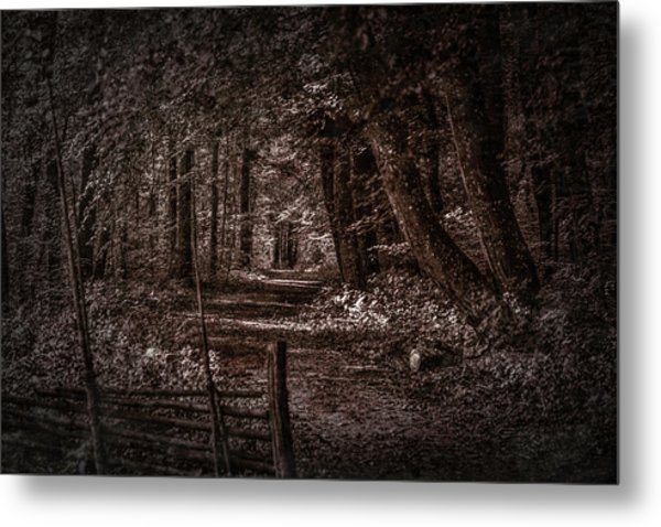 Path In Forest #i0 Metal Print
